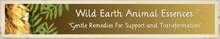 Wild Earth Animal Essences ® -- Company Site